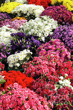 Bob Phillips - Taksim Square Flower Market Two