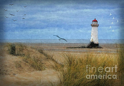 Talacre Lighthouse - Wales by Lianne Schneider