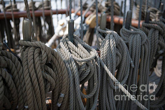 Dale Powell - Tall Ship Lines on the Barque Eagle