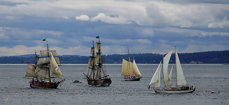 Tall Ship Lineup by Rick Lawler