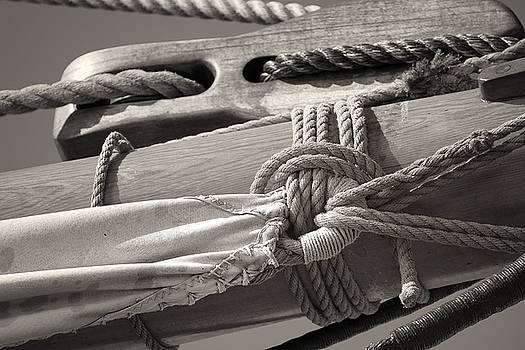 Tall Ship Sail Cloth Sepia by Dapixara Art