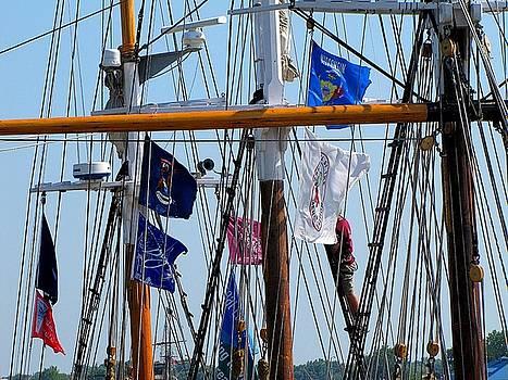 Scott Hovind - Tall Ship Series 15