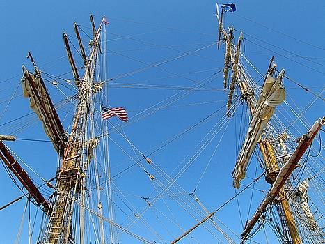 Scott Hovind - Tall Ship Series 16