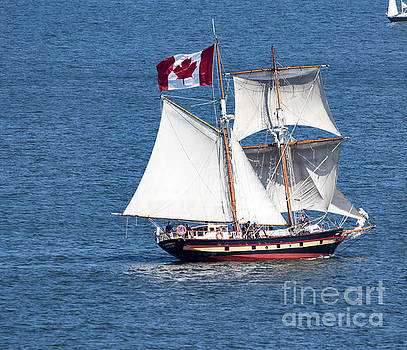 Tall Ship - St. Lawrence II by CJ Park
