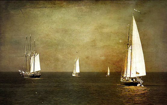 Tall Ships  by Matt Shiffler