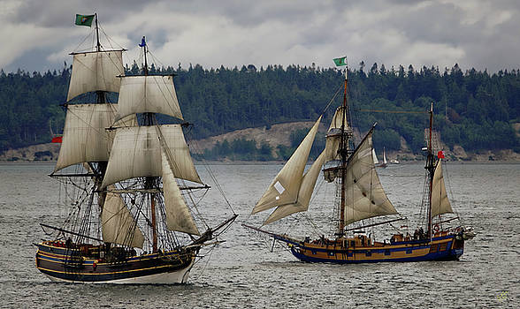 Tall Ships by Rick Lawler