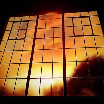 Tall Windows #1 by Maxim Tzinman