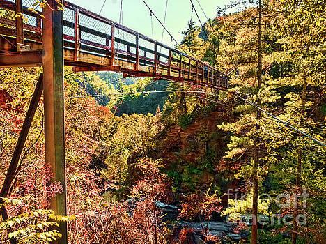 Tallulah Gorge Suspension Bridge by David Lane