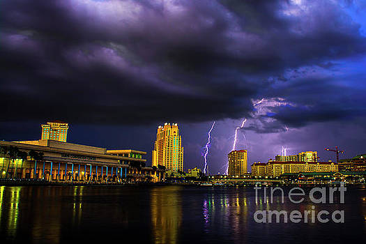 Tampa Lightning by Quinn Sedam
