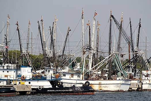 Tampa Shrimp Boats by Theresa Willingham