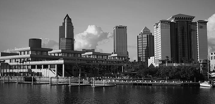 Tampa Southern View by Larry Underwood