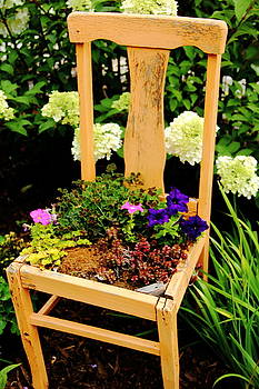 Allen Nice-Webb - Tan Chair Planter