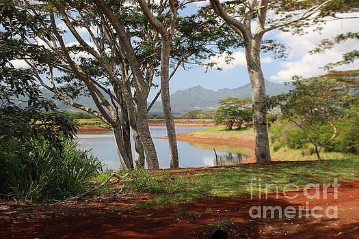 Tanada Reservoir Oahu by Cheryl Del Toro