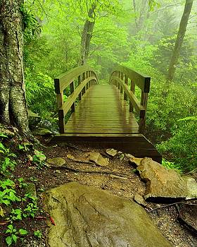 Tanawha Trail Bridge by Jeff Burcher