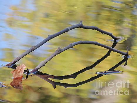 Tandem Twigs by Robert Ball
