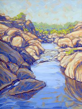 Taneyhill Creek by Tom Taneyhill