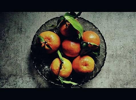 Tangerines by Marija Djedovic