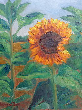 Tangerini Sunflower by Maureen Obey