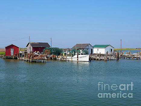 Tangier Island Chesapeake Bay Virginia by Louise Heusinkveld