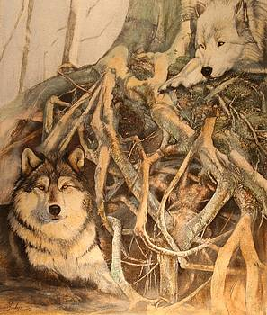 Tanglewood Wolves by Susie Gordon