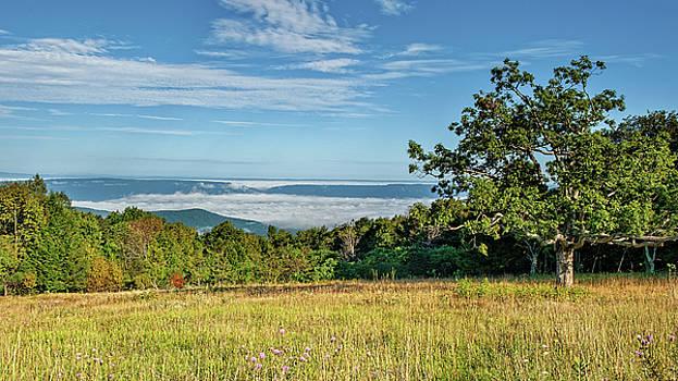 Tanners Ridge Overlook Morning Fog Ocean by Lara Ellis