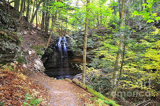 Tannery Falls in Alger County Michigan by Terri Gostola