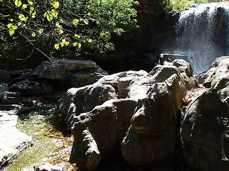 Tanyard Creek  by Allison Jones