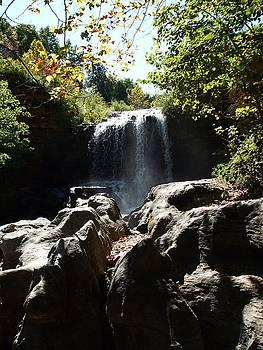 Tanyard Creek Falls by Allison Jones