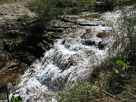 Tanyard Creek Waterfalls by Allison Jones