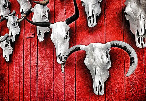 Dennis Cox - Taos Skulls