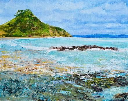 Tapeka Beach Russell Bay of Islands NZ by Dai Wynn
