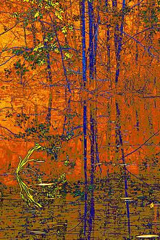 Tapestry by Steve Warnstaff