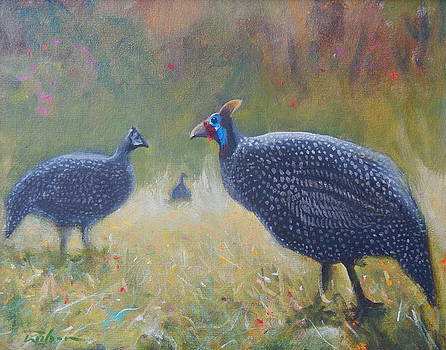 Tarantale - guinea fowl by Ron Wilson