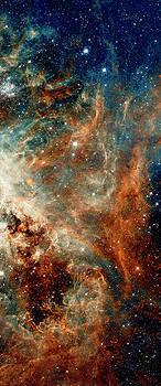 Weston Westmoreland - Tarantula Nebula Triptych 2