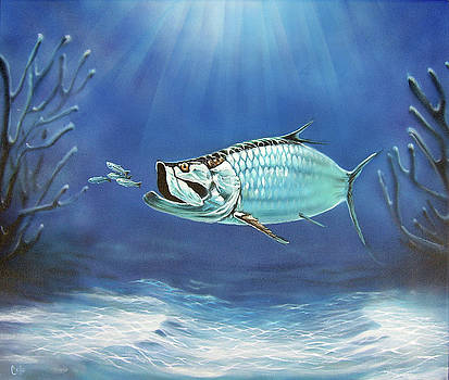 Tarpon by Larry Cole