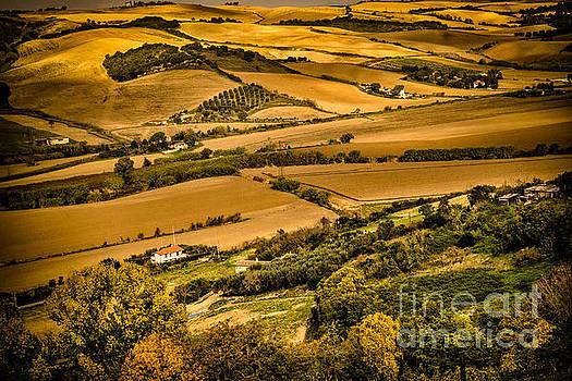 Tarquinia, Italy by Barbara Youngleson