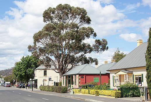 Ramunas Bruzas - Tasmanian Town