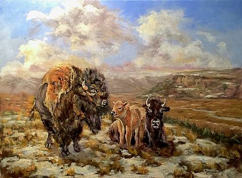 J P Childress - Tatanka Valley