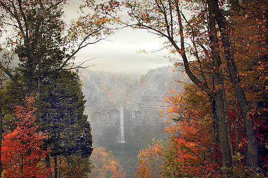 Jessica Jenney - Taughannock in the Mist
