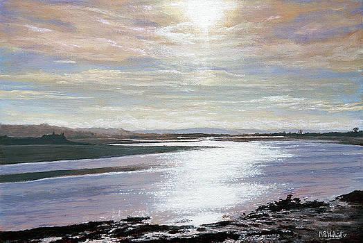 Taw Estuary by Mark Woollacott