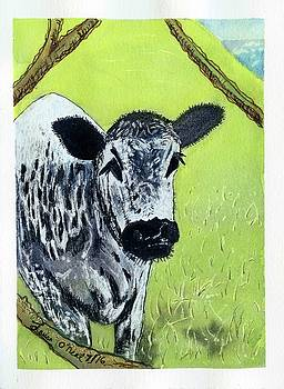 Taylor Mountain Cow by Laura O'Neal