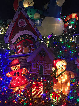 Robert Meyers-Lussier - Taylor Residence Christmas Lights Extravaganza 2