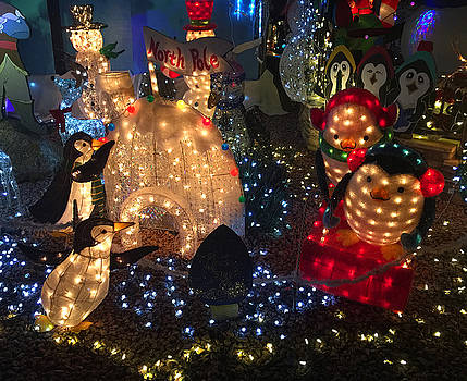 Robert Meyers-Lussier - Taylor Residence Christmas Lights Extravaganza 3