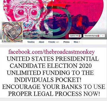 Tbmonkeytwits And Gets Presidential by Catherine Lott