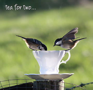 Tea for Two  by Suesy Fulton