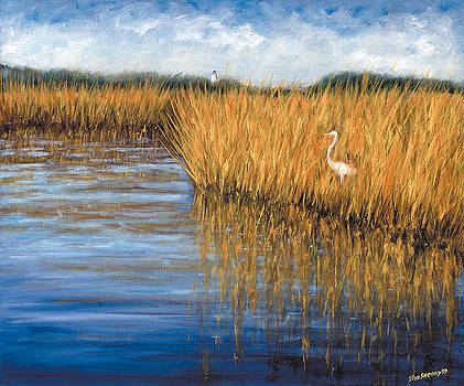 Teaches Marsh by Stan Sweeney