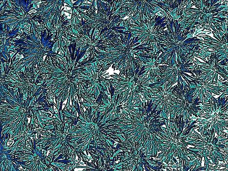 Teal Floral Abstract by Doug Morgan