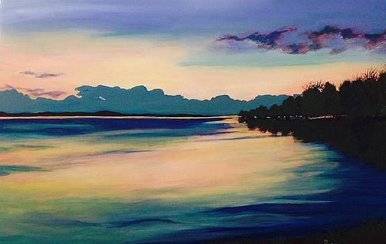 Teal Sunset by Barbara Remensnyder