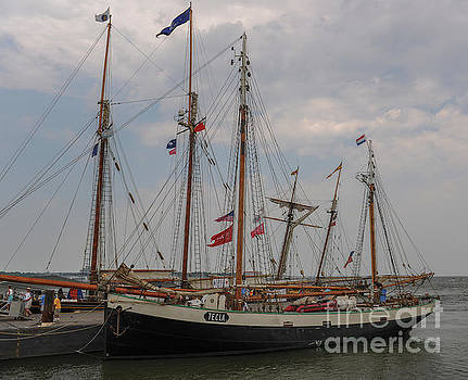 Tecla Docked in Charleston by Dale Powell