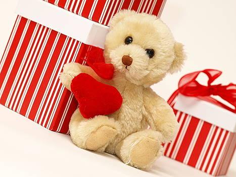 Teddy Bear by Valerie Morrison